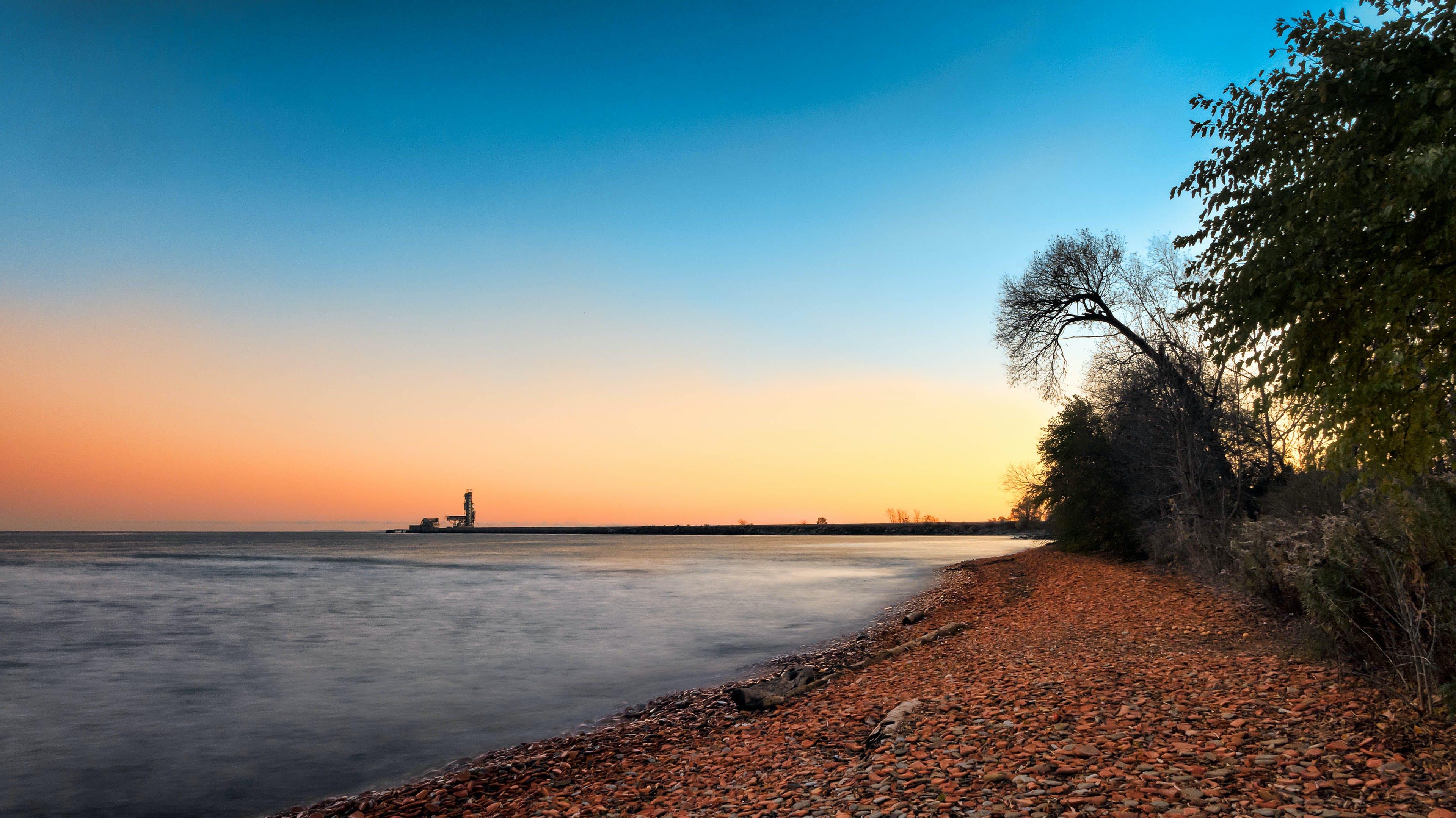 Trees on Shoreline Under Blue Sky