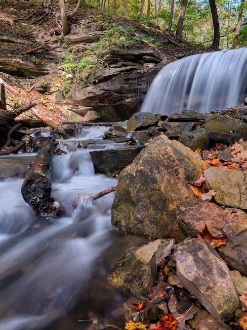 Foto profissional grátis de água, cachoeiras, corrente, pedras