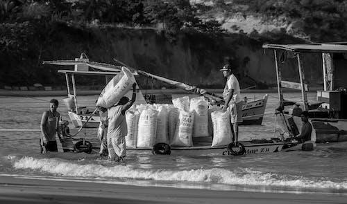 Foto stok gratis #hardwolrk, #keras, #penangkapan ikan