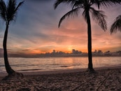 dawn, sunset, beach