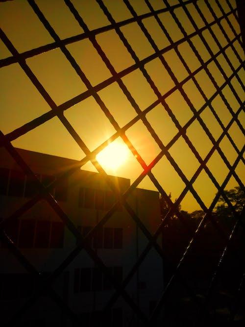 Free stock photo of morning sun, sunrise