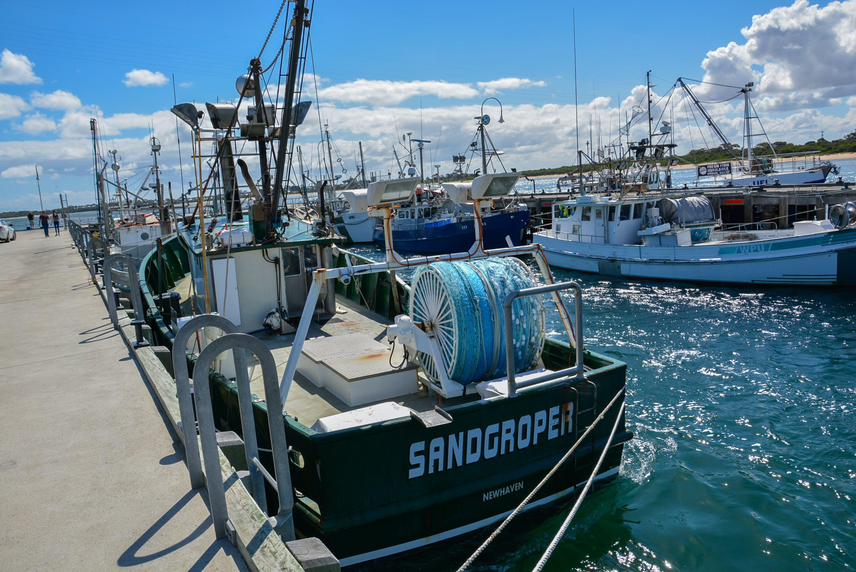 Free stock photo of #melbourne #wharf #fishing #boat #sandgroper