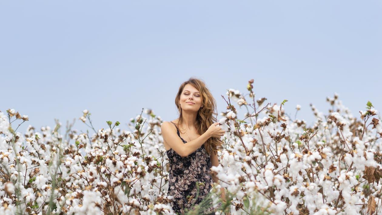 avslappning, blommor, fält