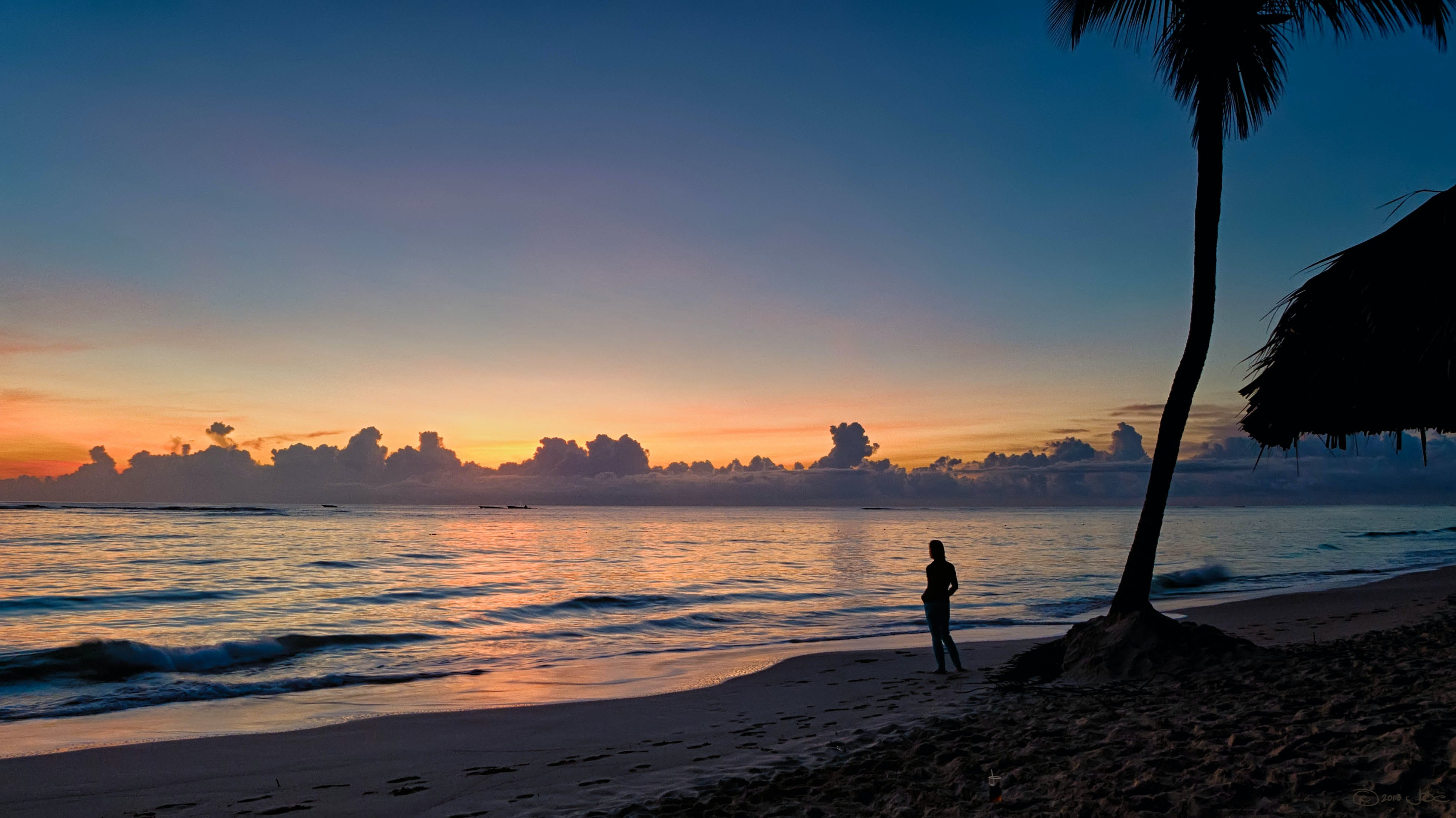 Silhouette of a Person Near Coconut Tree on Shore during Golden Hour
