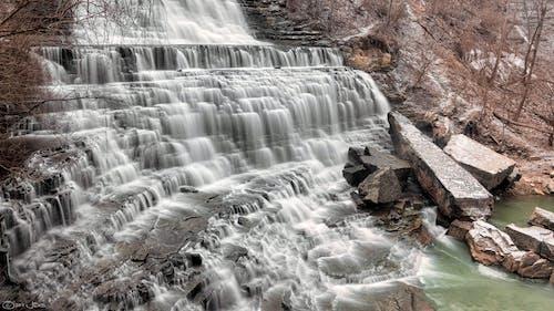Fotos de stock gratuitas de agua, arboles, cámara rápida, cascada