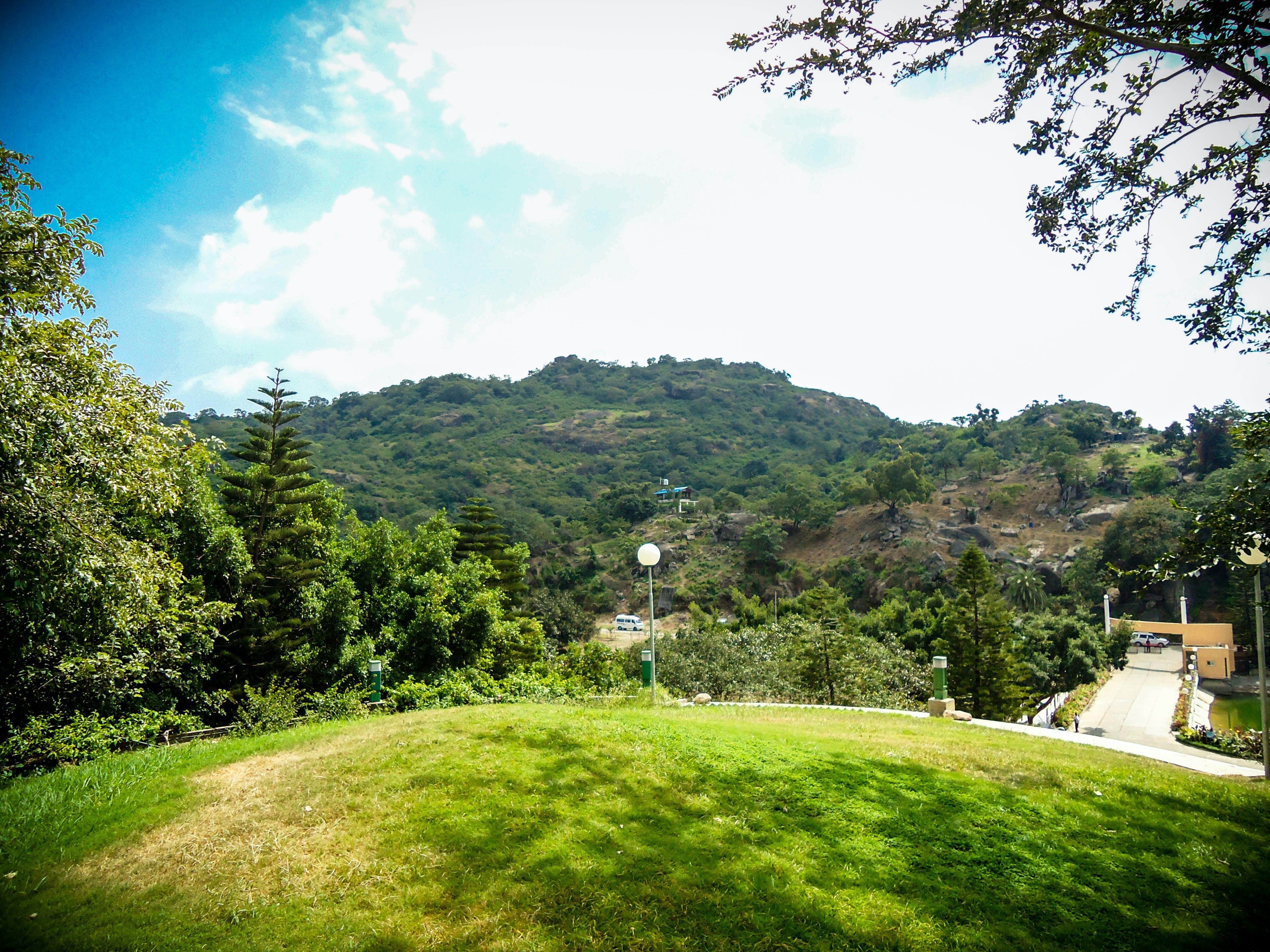 Δωρεάν στοκ φωτογραφιών με gyan sarovar, mount abu, βουνό, δέντρο