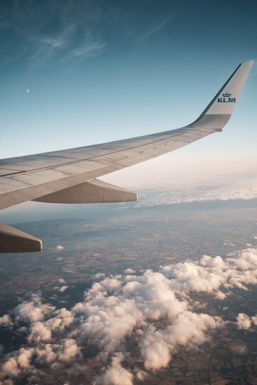 Gratis arkivbilde med dagslys, fly, flyfløyen, flyging