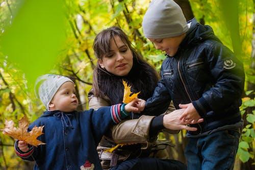 Imagine de stoc gratuită din a fi părinte, băieți, bonetă, copii
