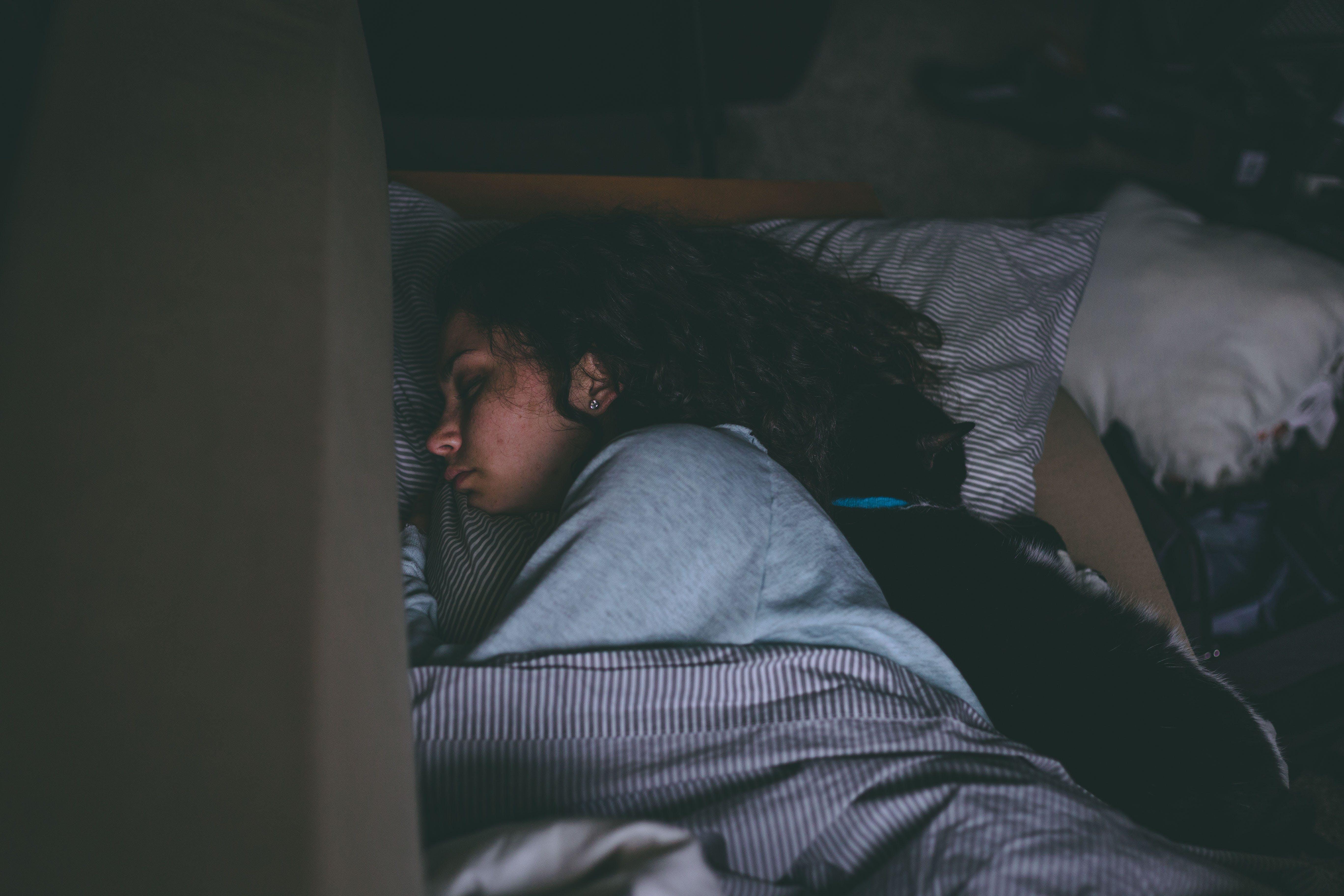 고양이, 반려동물, 사람, 수면의 무료 스톡 사진