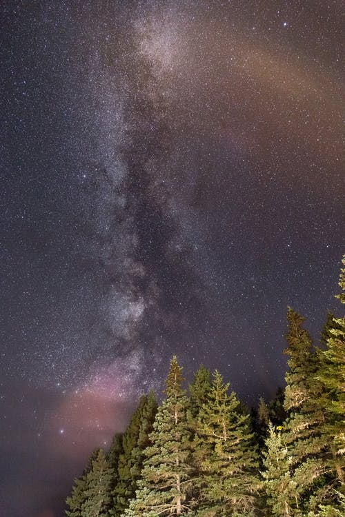 Low-angle Photography of Night Sky