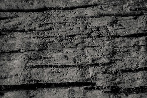 Free stock photo of old wood, texture, wood texture