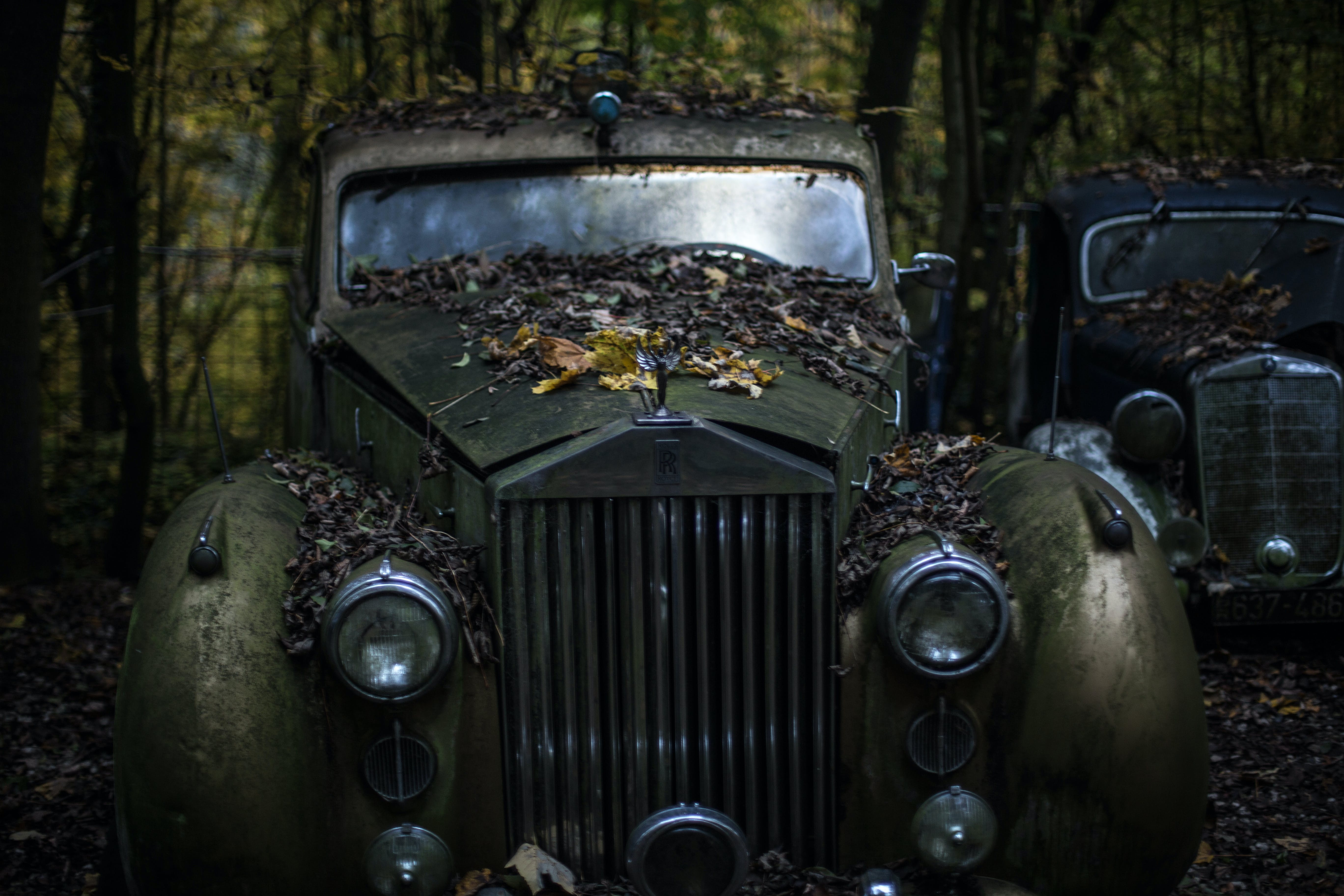 Green Classic Car in the Forest