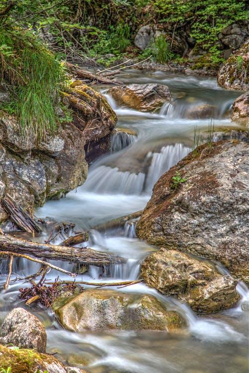 คลังภาพถ่ายฟรี ของ กระแสน้ำ, ตะไคร่น้ำ, น้ำ, หิน
