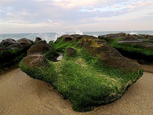 Gratis lagerfoto af bølger, bugt, hav, havudsigt