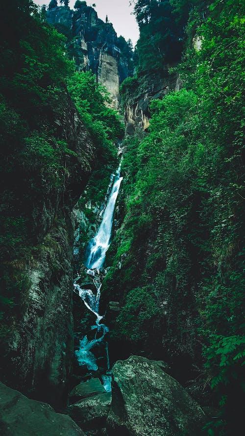 Kostenloses Stock Foto zu berg, blaues wasser, coole hintergrundbilder, dunkelgrün