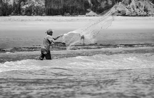 Photos gratuites de bord de mer, eau, gens, homme