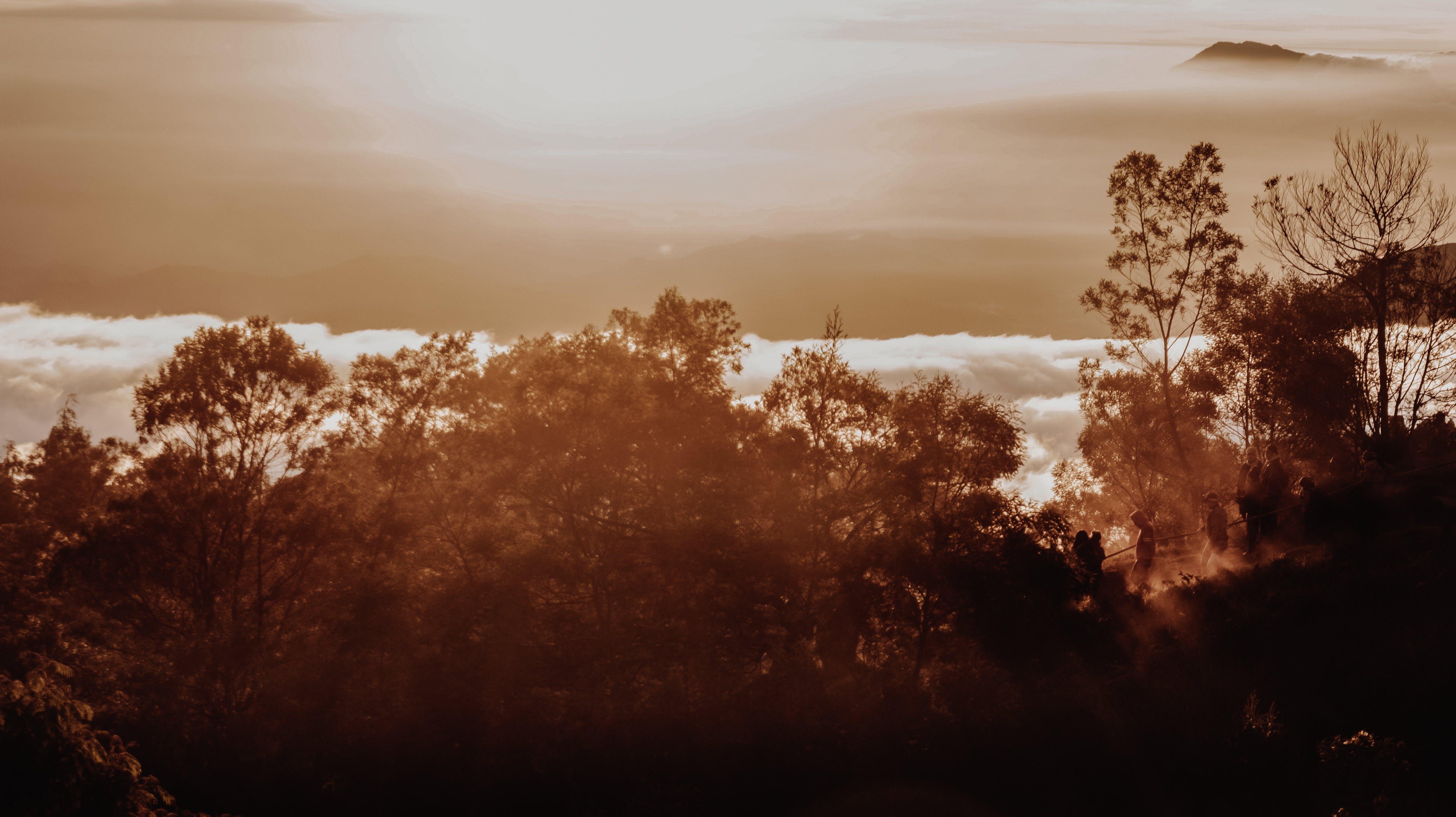 Free stock photo of moody, mountain, silhouette