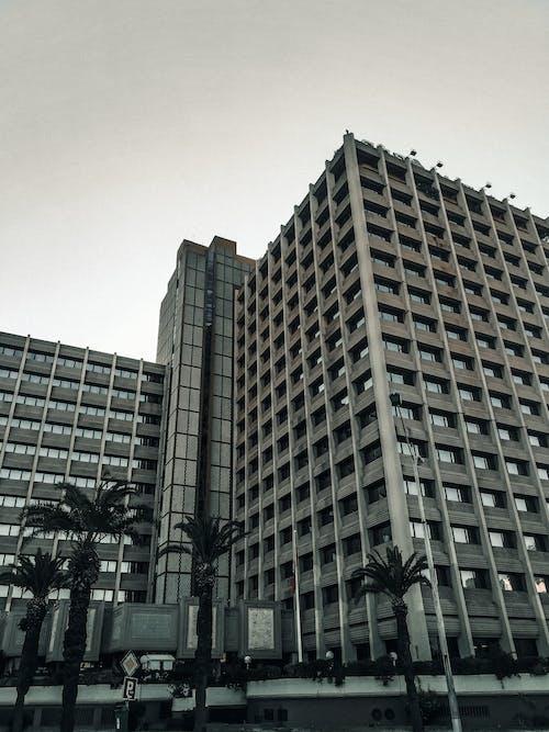 Foto profissional grátis de arquiteto, centro da cidade, cidade, construção