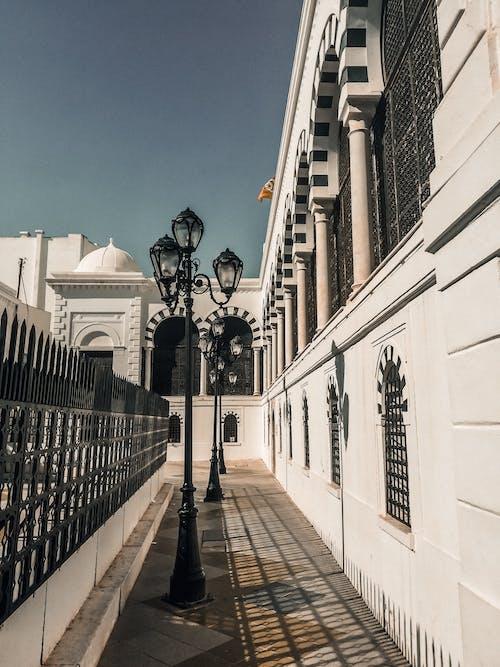 Foto profissional grátis de arquiteto, Capitólio, centro da cidade, cidade
