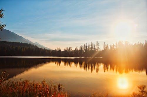 Kostenloses Stock Foto zu bäume, dämmerung, friedlich, landschaftlich