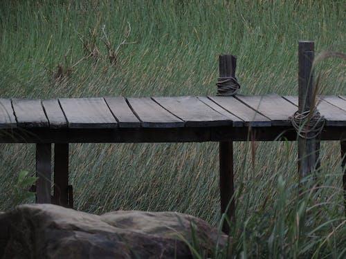 Photos gratuites de bois, caillou, champ d'herbe, herbe