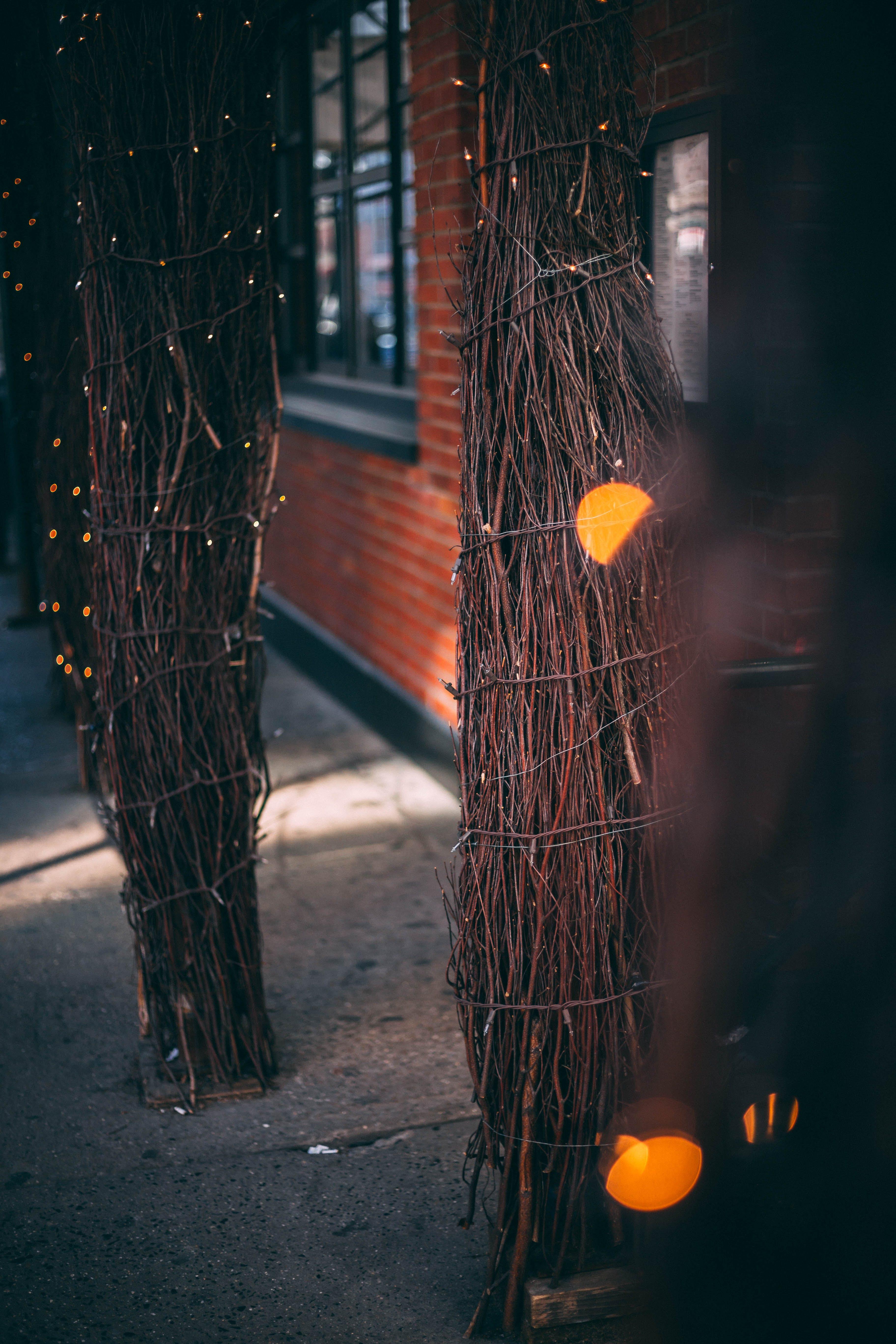 Ingyenes stockfotó csillog, dekoratív, éjszaka, fények témában