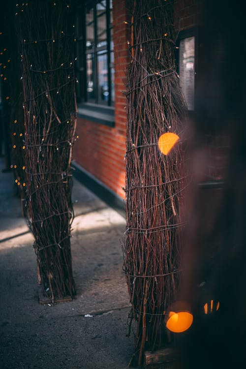 Brown Twigs Decor at Night