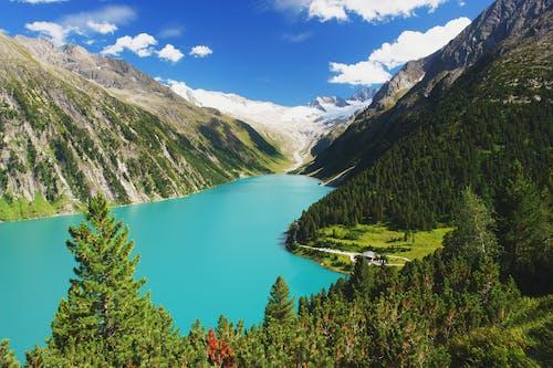 ağaçlar, dağ, doğa, gün ışığı içeren Ücretsiz stok fotoğraf