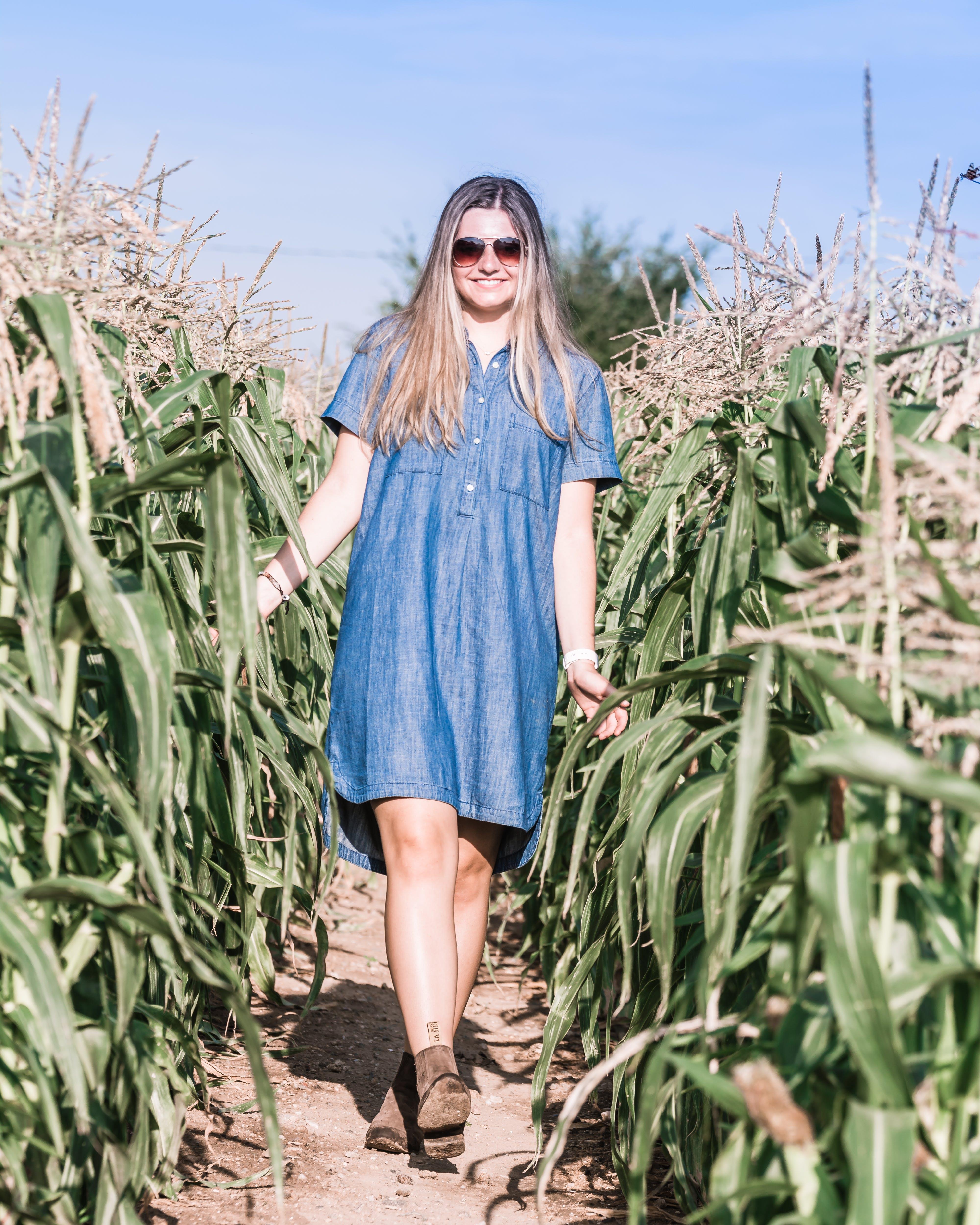 Δωρεάν στοκ φωτογραφιών με αγρόκτημα, γυαλιά ηλίου, έφηβη, καλαμπόκι