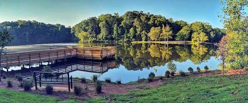 Immagine gratuita di acqua, bacino di pesca, pesca, pontile