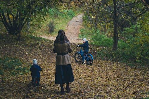 familie, herbst urlaub, herbststimmung wald, mutter mit kindern 的 免費圖庫相片