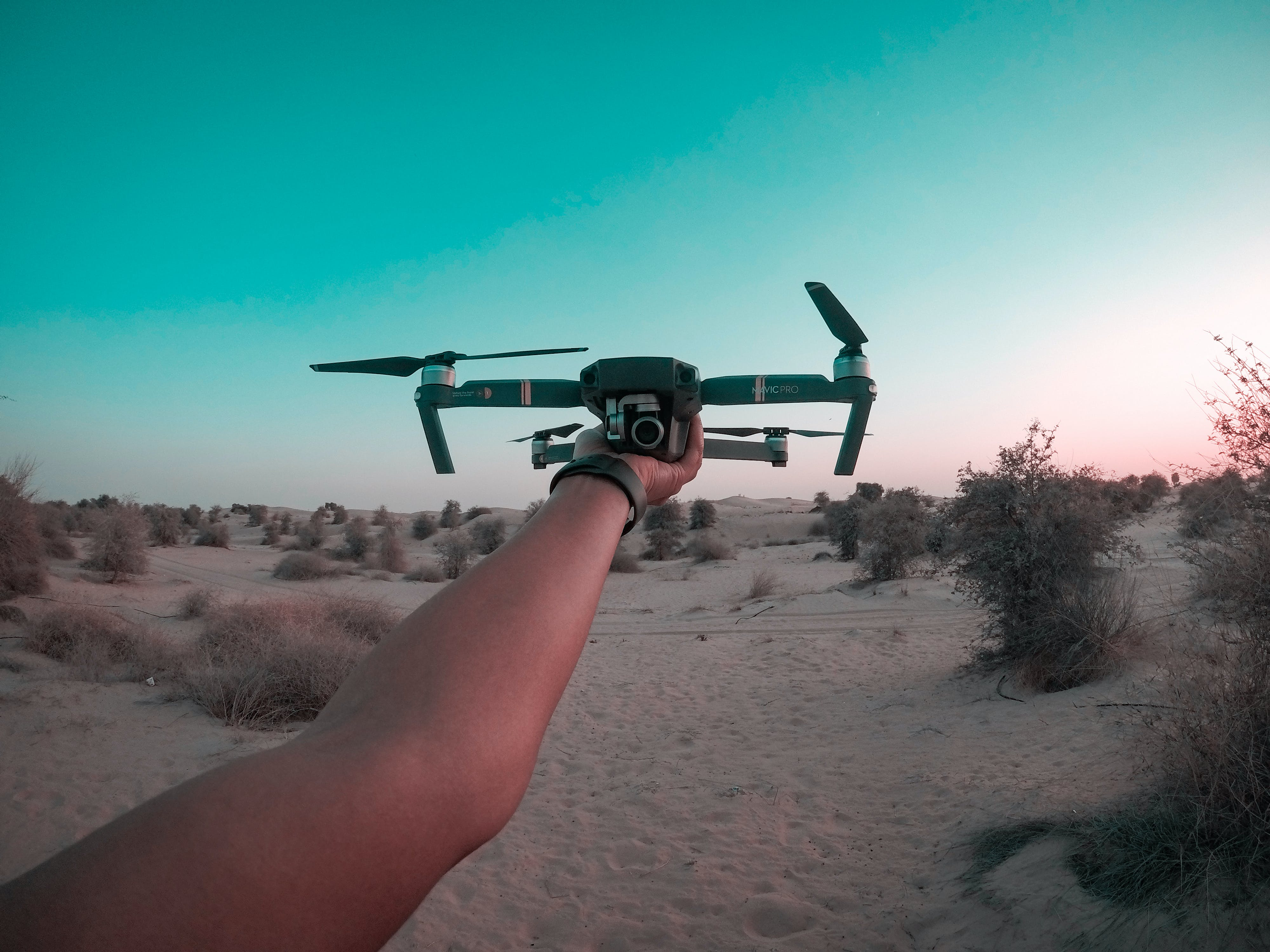 Person Holding Drone