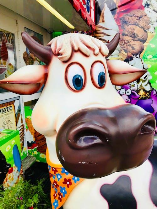 Gratis stockfoto met bleek, bruin, koe