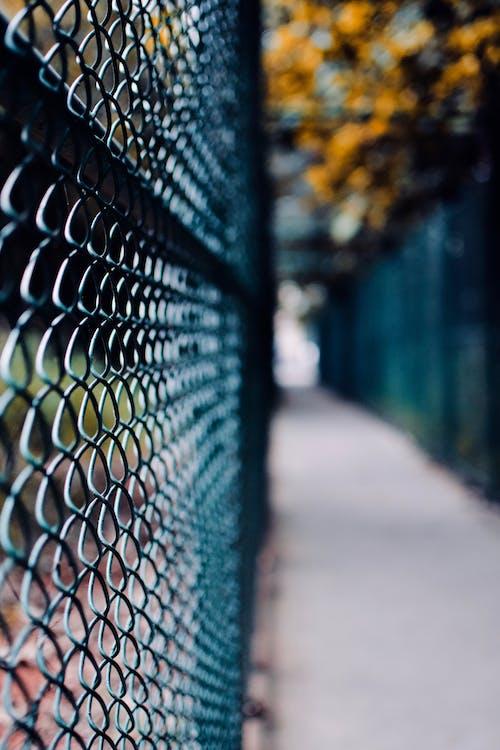保全, 围栏, 景深, 線 的 免费素材照片