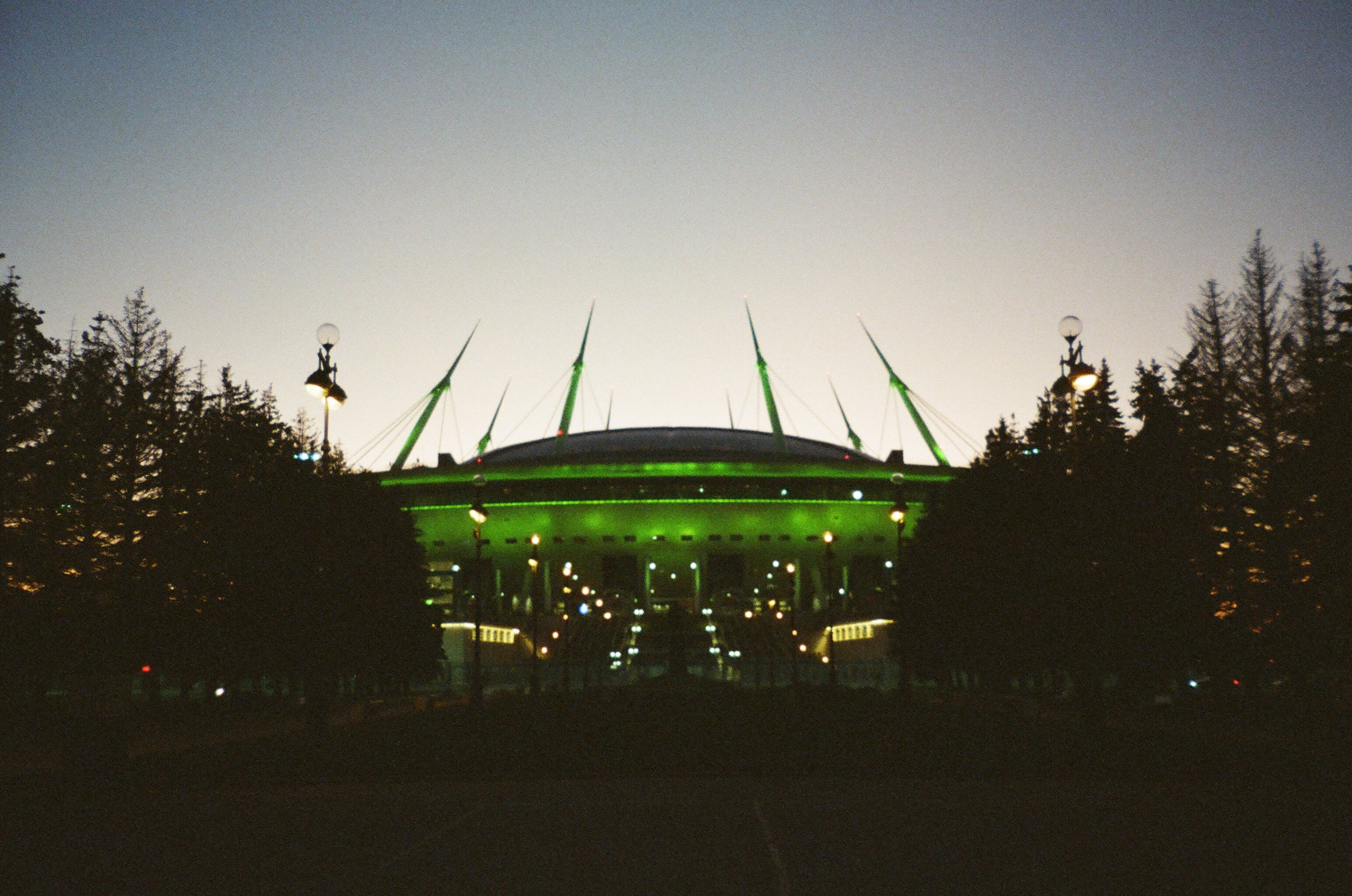 Green Stadium in Between Trees