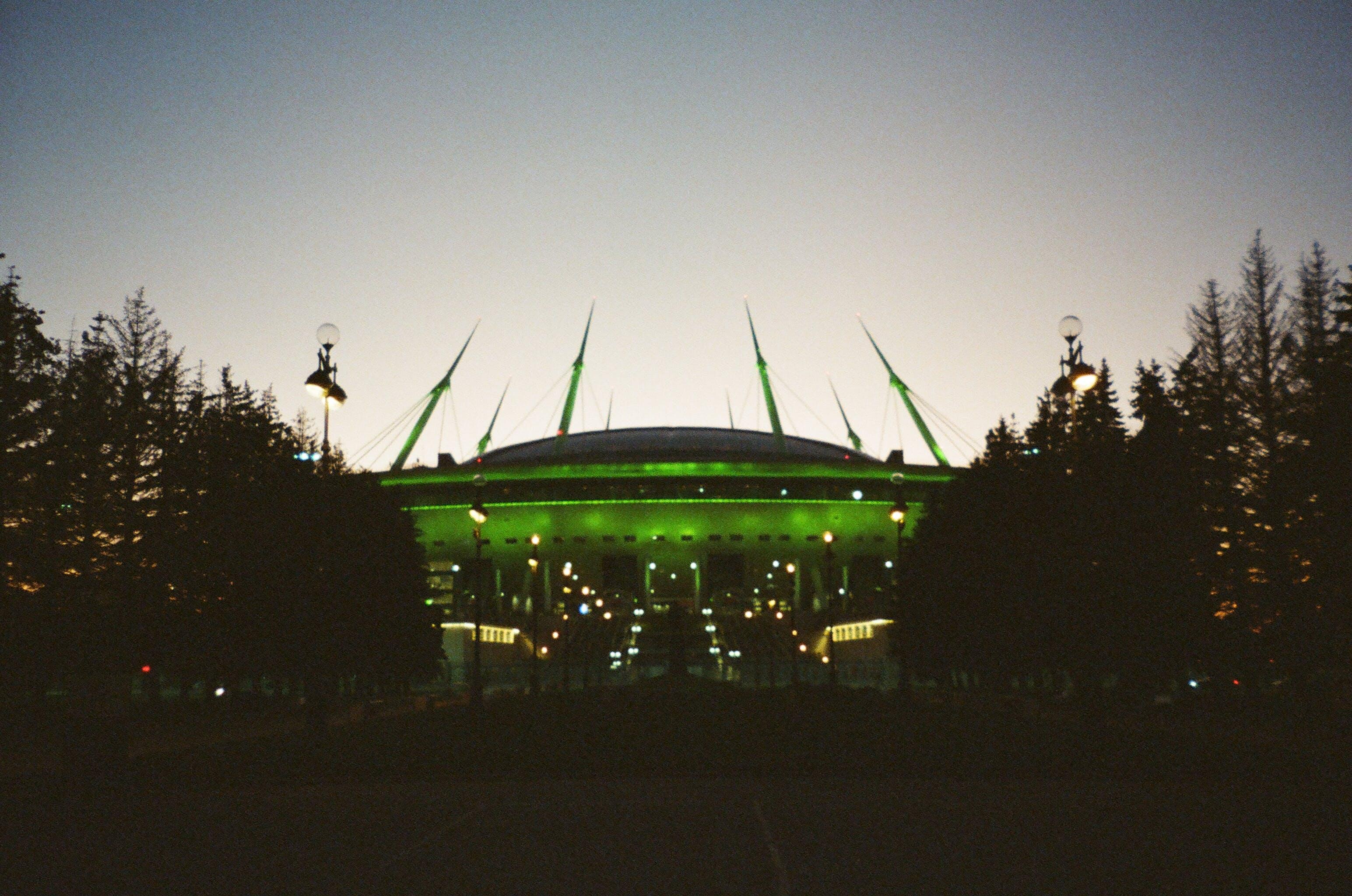 Green Stadium in Between Trees