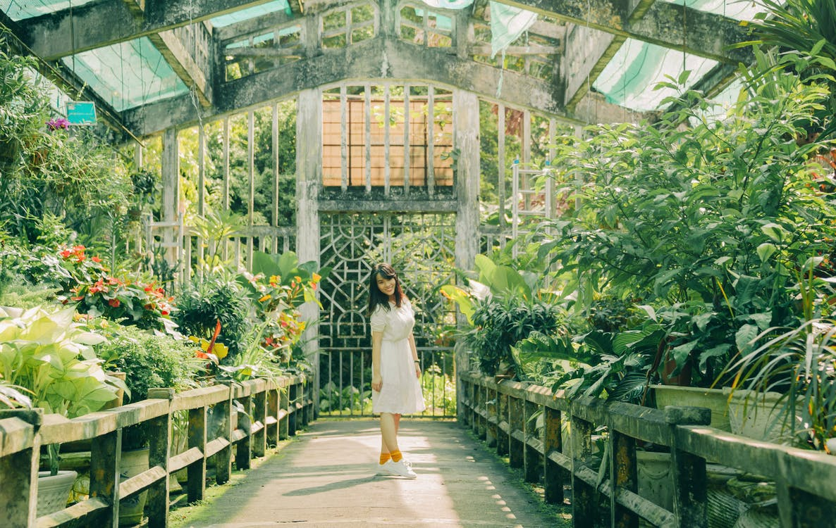 Woman Standing Inside Green House