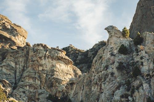 Foto d'estoc gratuïta de alt, escalar, foto amb angle baix, geologia