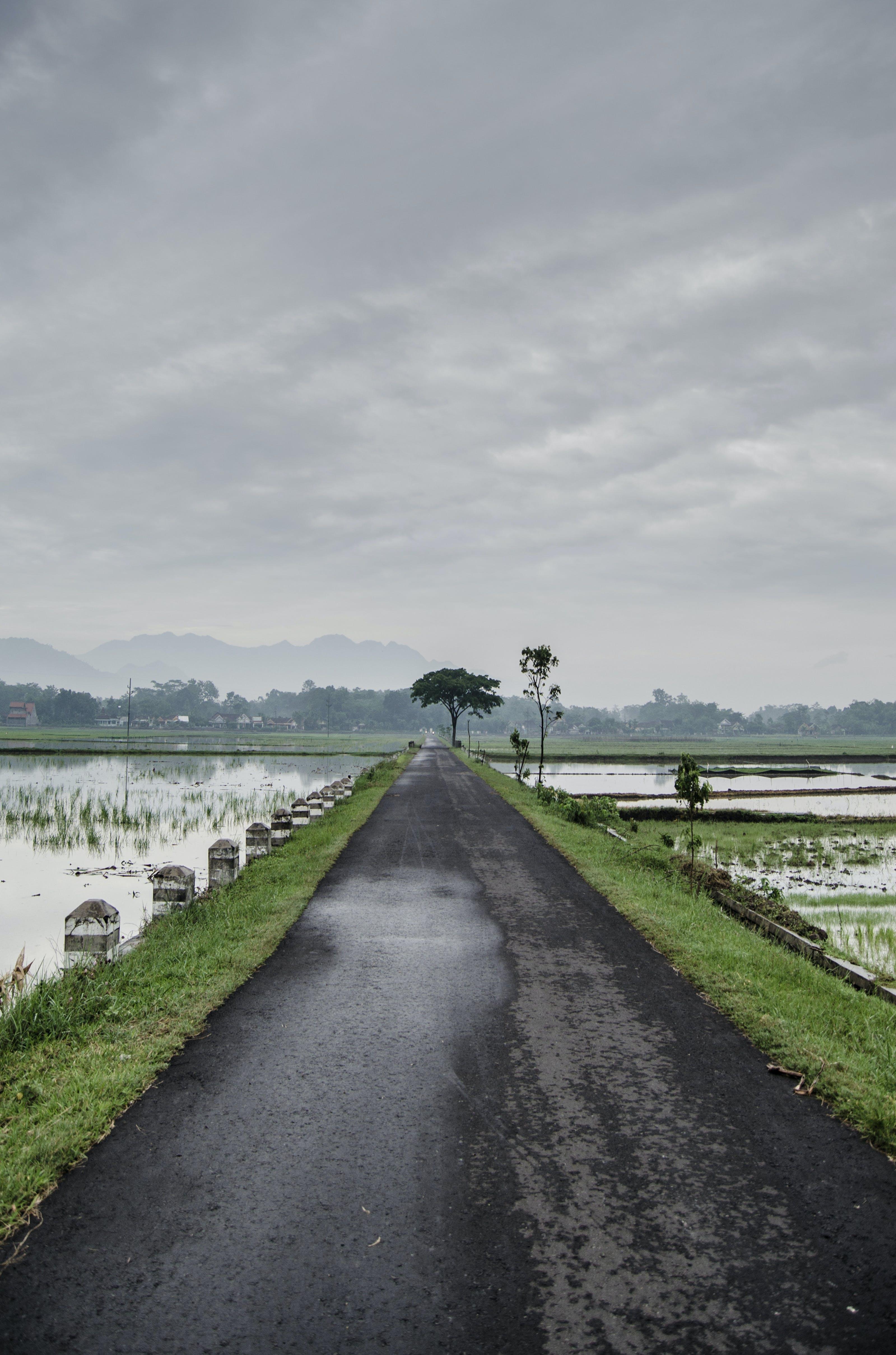 Free stock photo of road, rainy, wet, dark clouds