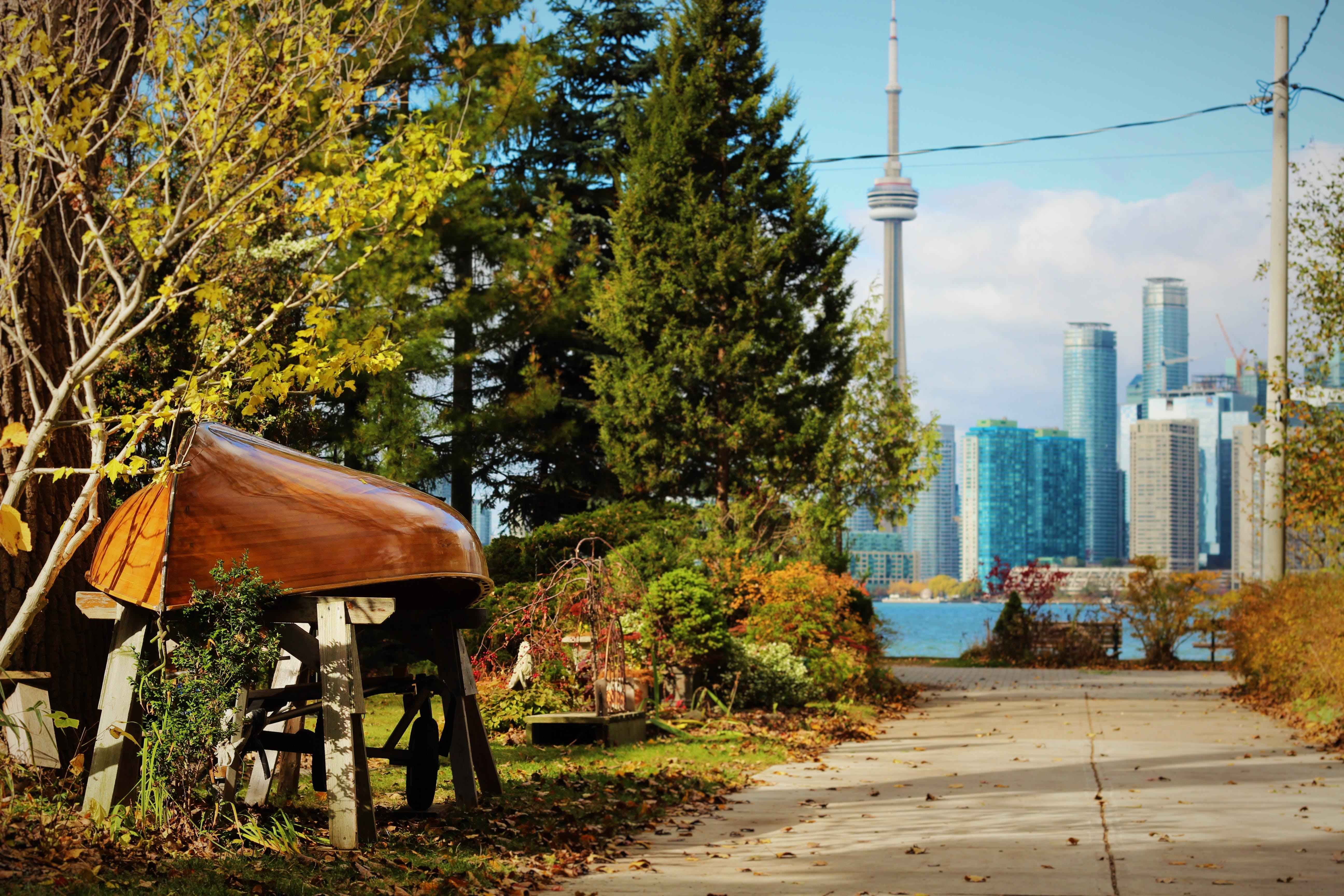 Free stock photo of city, contrast, green city, Toronto