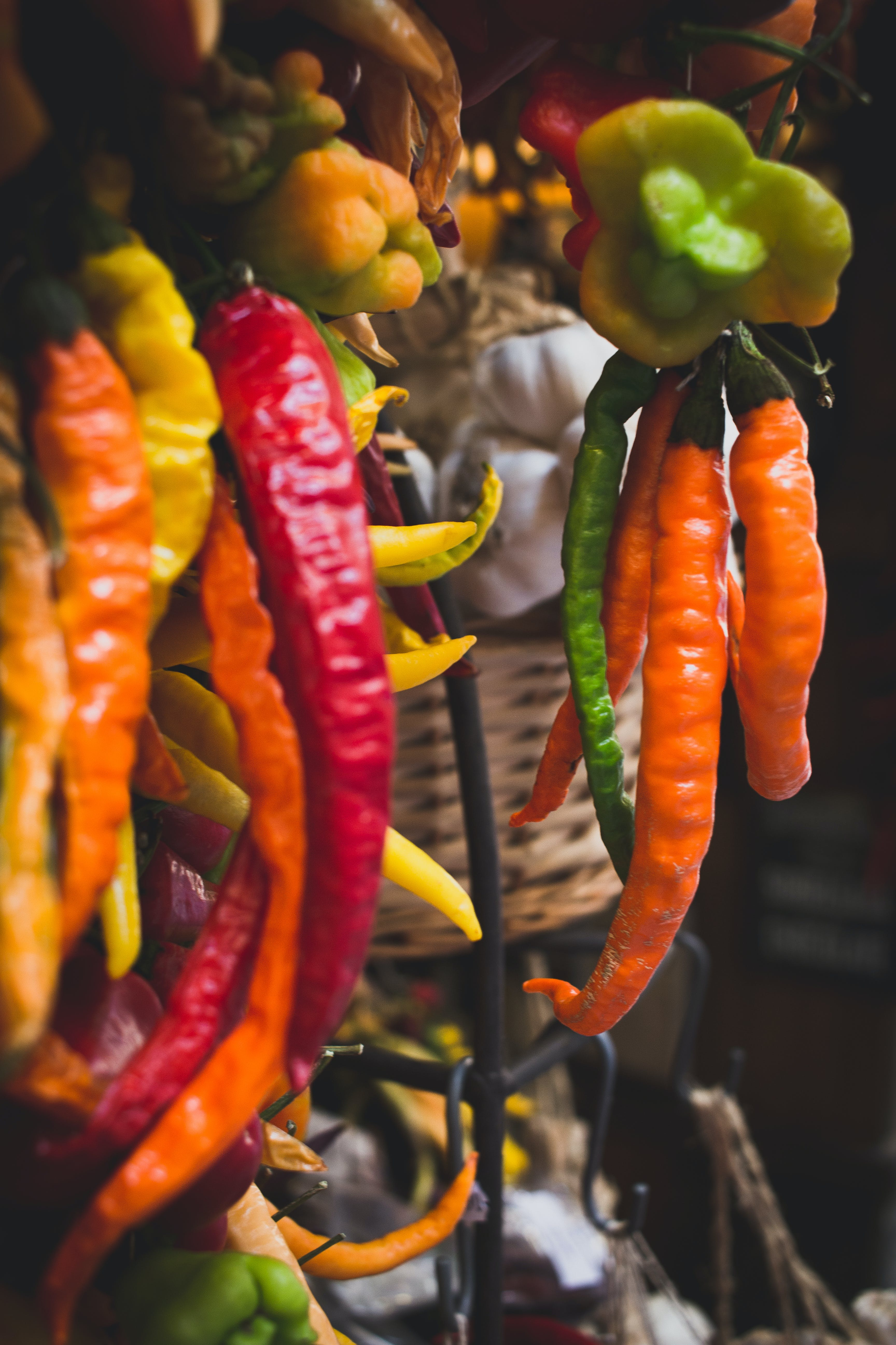 Free stock photo of chili peppers, farmers market, mallorca, market