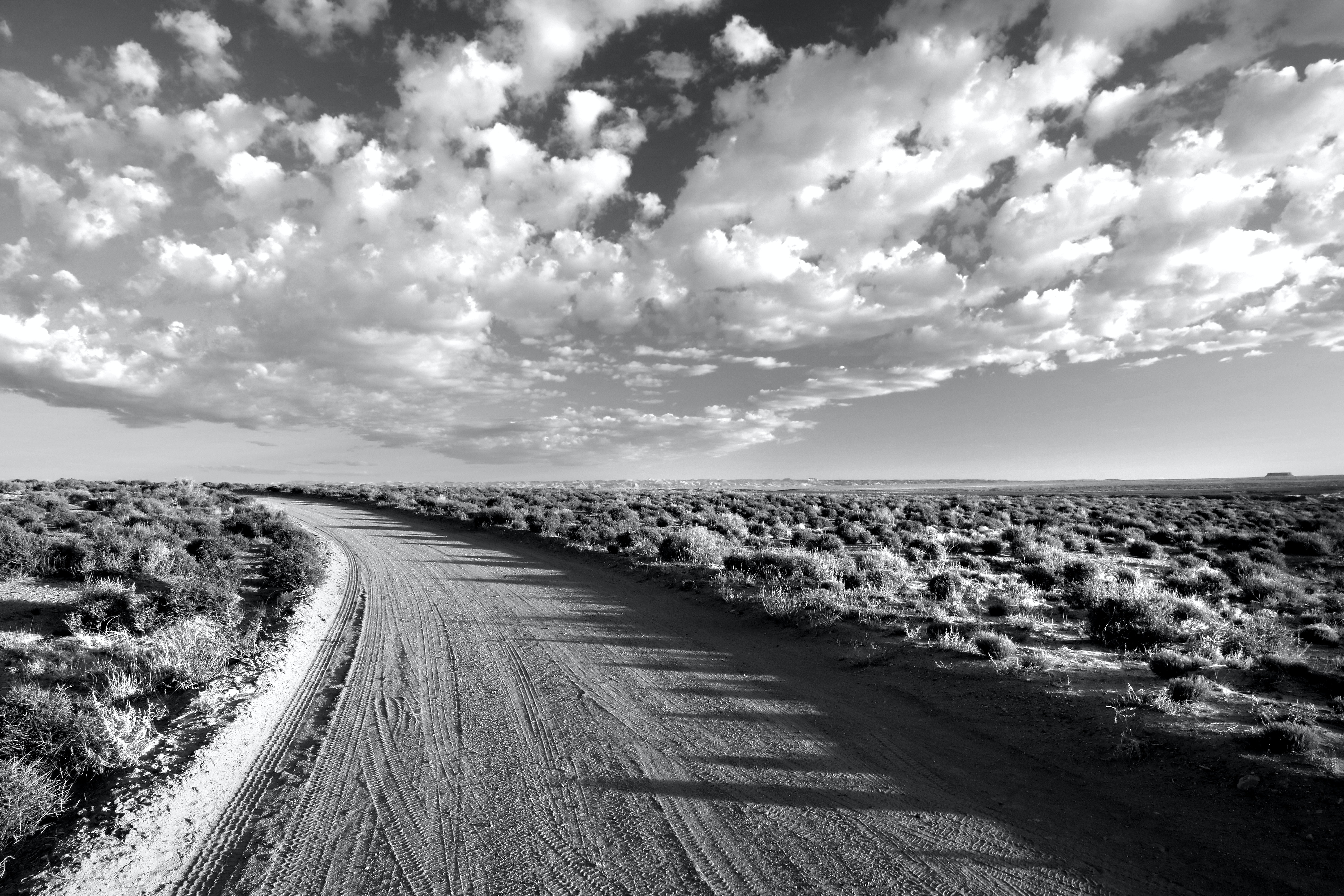 Grayscale Photo of Empty Road Between Grass Field Under ...