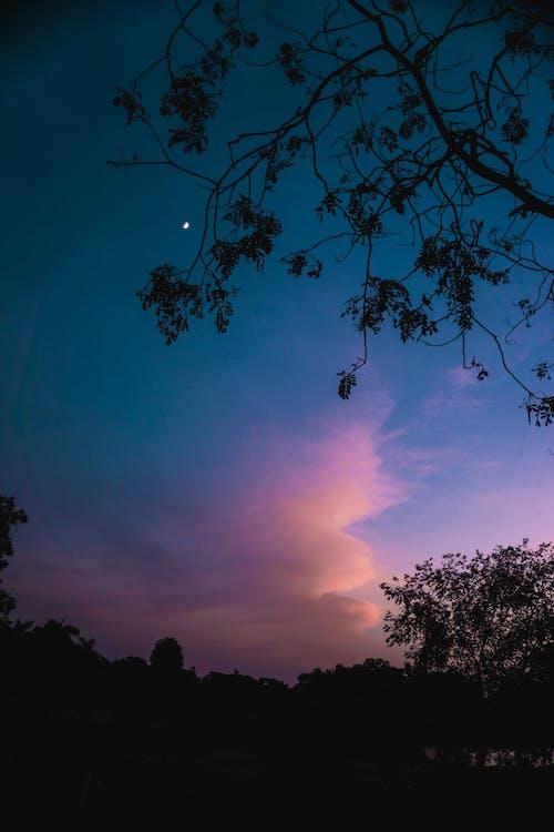 Kostenloses Stock Foto zu abend, blauer himmel, bunt, halbmond