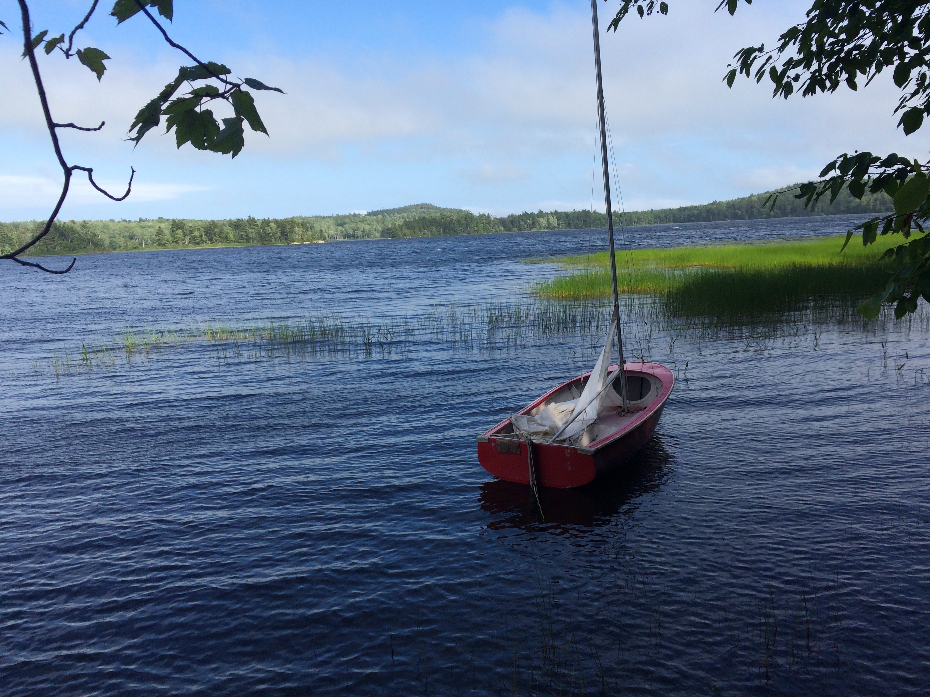 Free stock photo of boat, maine, summer