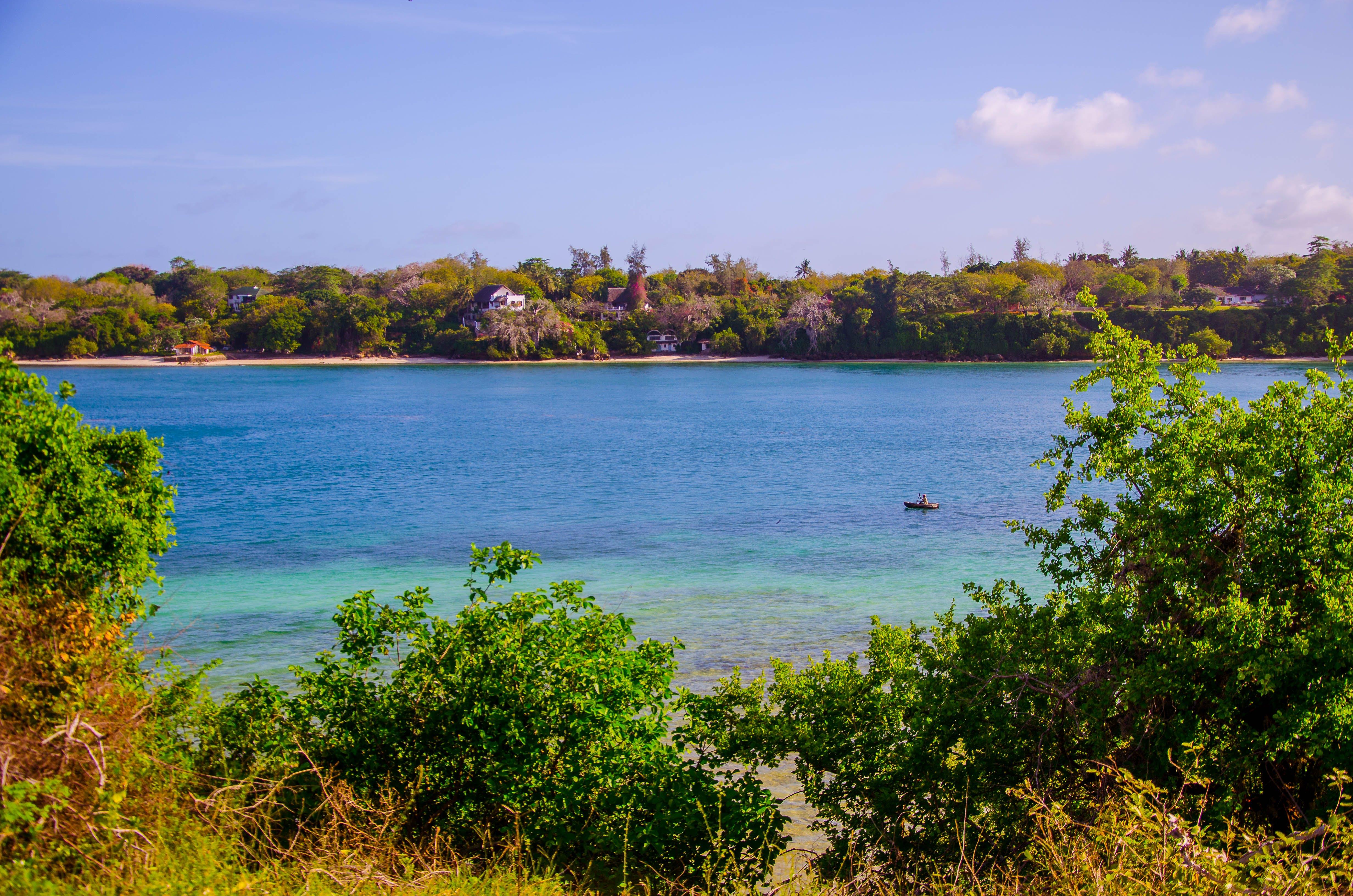 Free stock photo of beach, creek, ocean, water