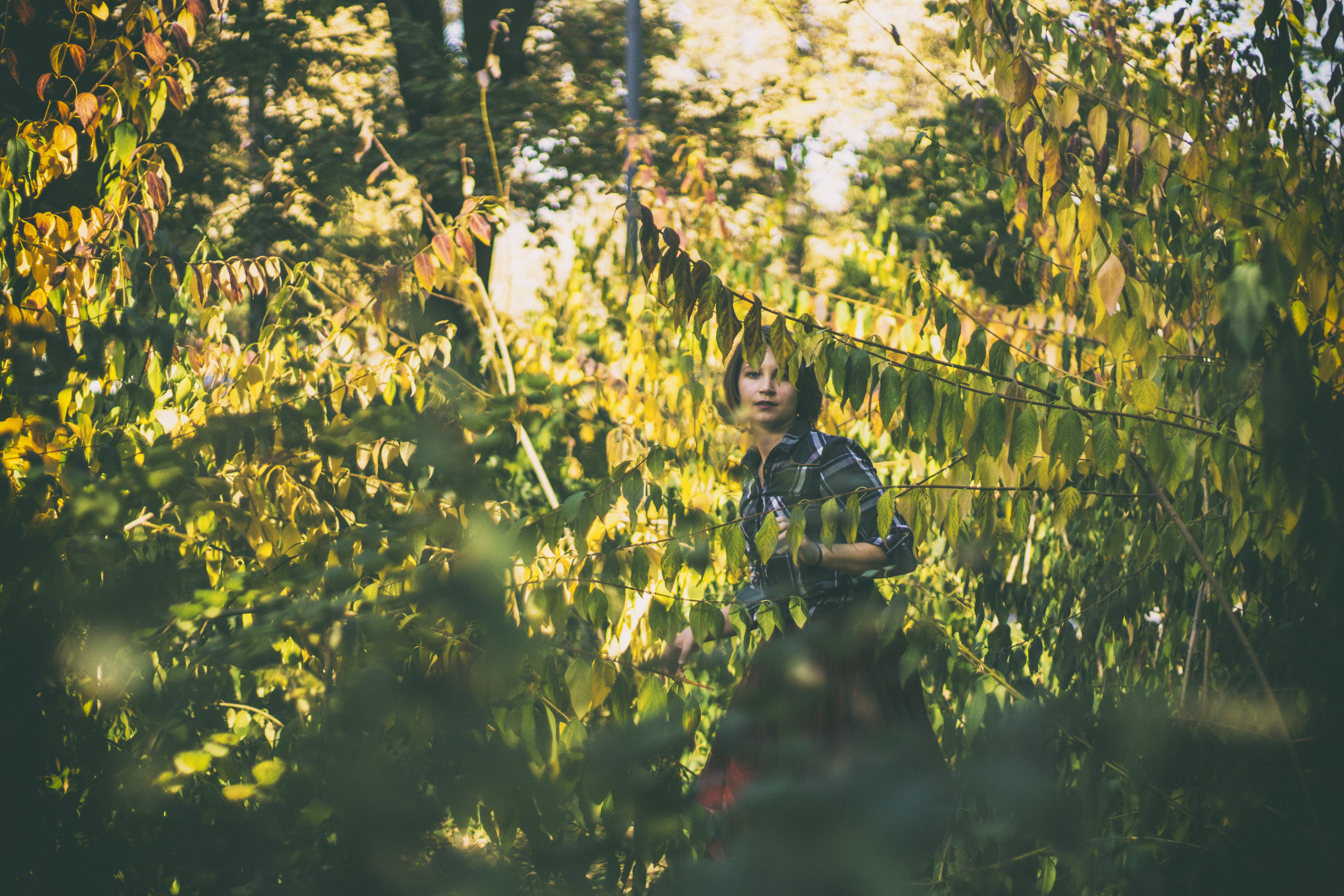 Woman In Woods Photography