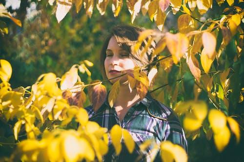 Photos gratuites de arbre, ensoleillé, femme, individu
