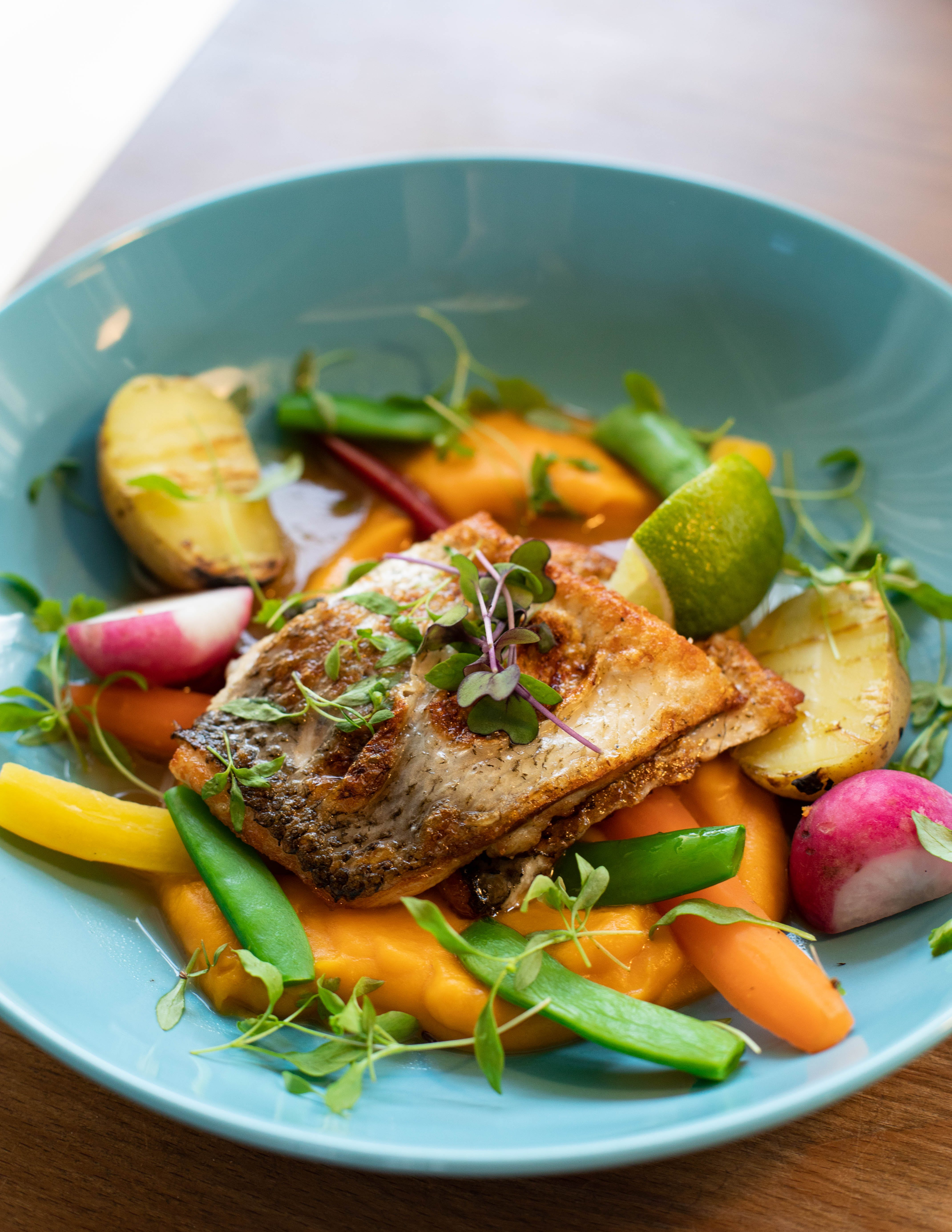 Gratis lagerfoto af close-up, cuisine, delikat, frokost