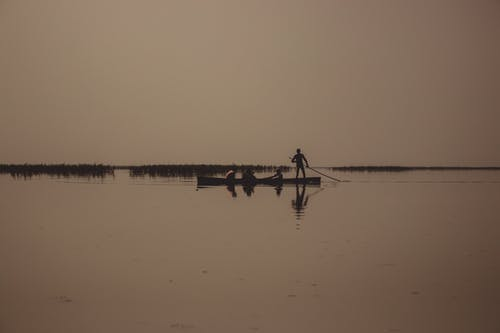 Free stock photo of Gujarat, india, nature