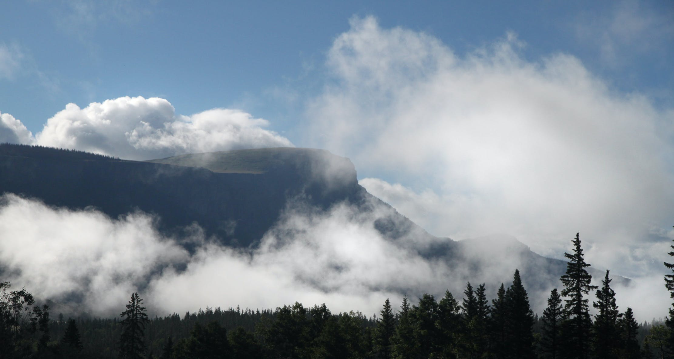 Silhouette of Trees and Mountain With White Clouds during Daytime